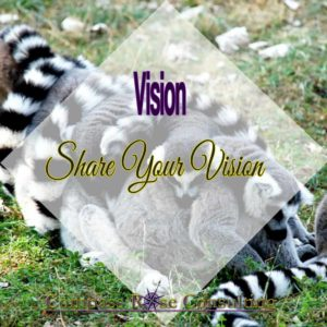 sharing your vision