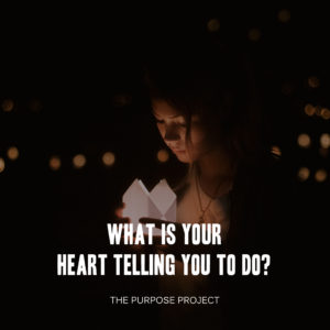 life's purpose, purpose project